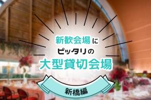 【100名以上】新歓会場にピッタリの大型貸切宴会場・新橋編